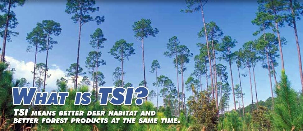 What is TSI?